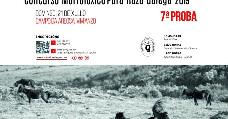 La 7ª prueba del Campeonato Gallego de Pura Raza Galega se celebrará en el Curro de Monte Faro (Vimianzo)