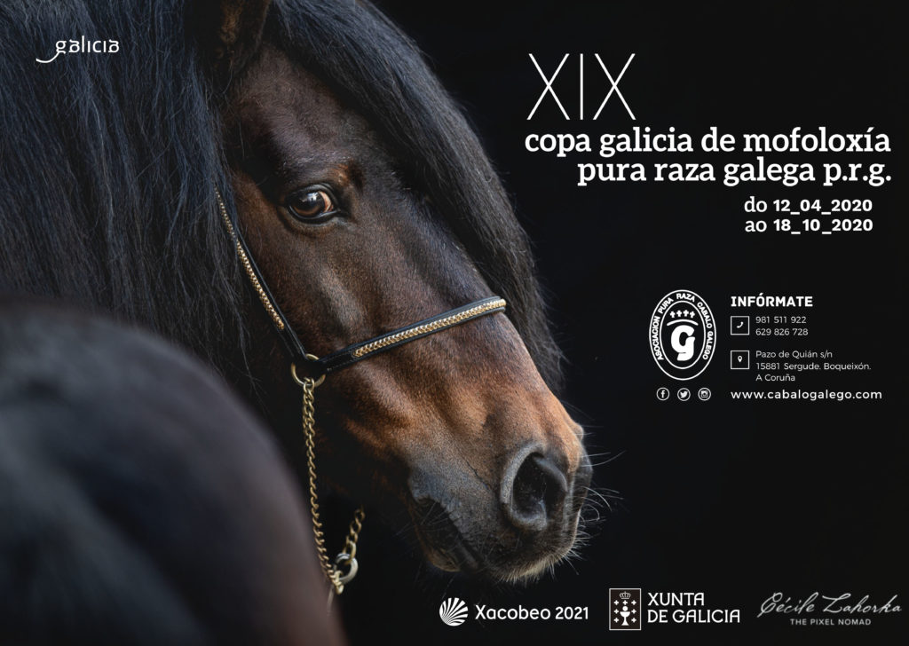 XIX Copa Galicia APRCG