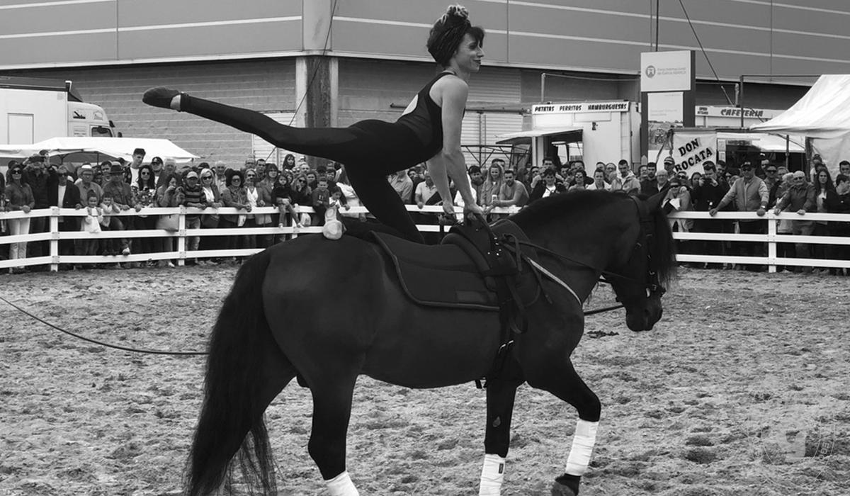 Asociación Pura Raza Cabalo Galego - Exhibiciones