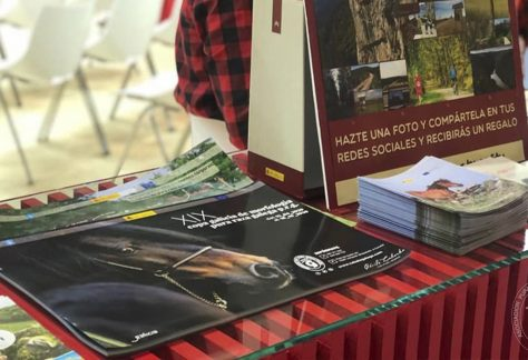 Asociación Pura Raza Cabalo Galego - Ferias