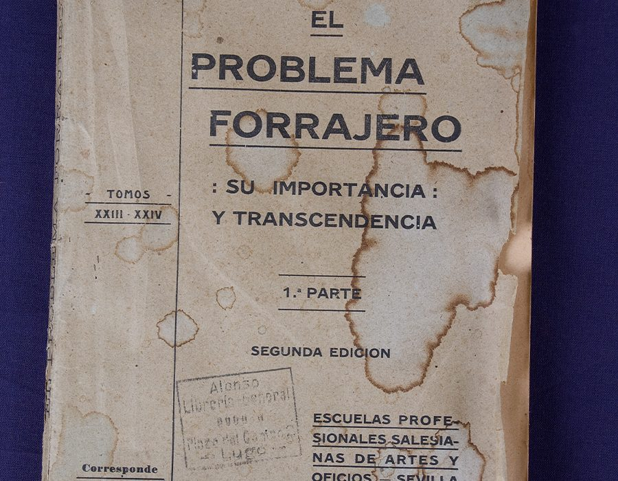 Museo Cabalo Galego